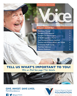 Voice Fall 2017-1